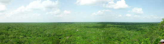 coba view